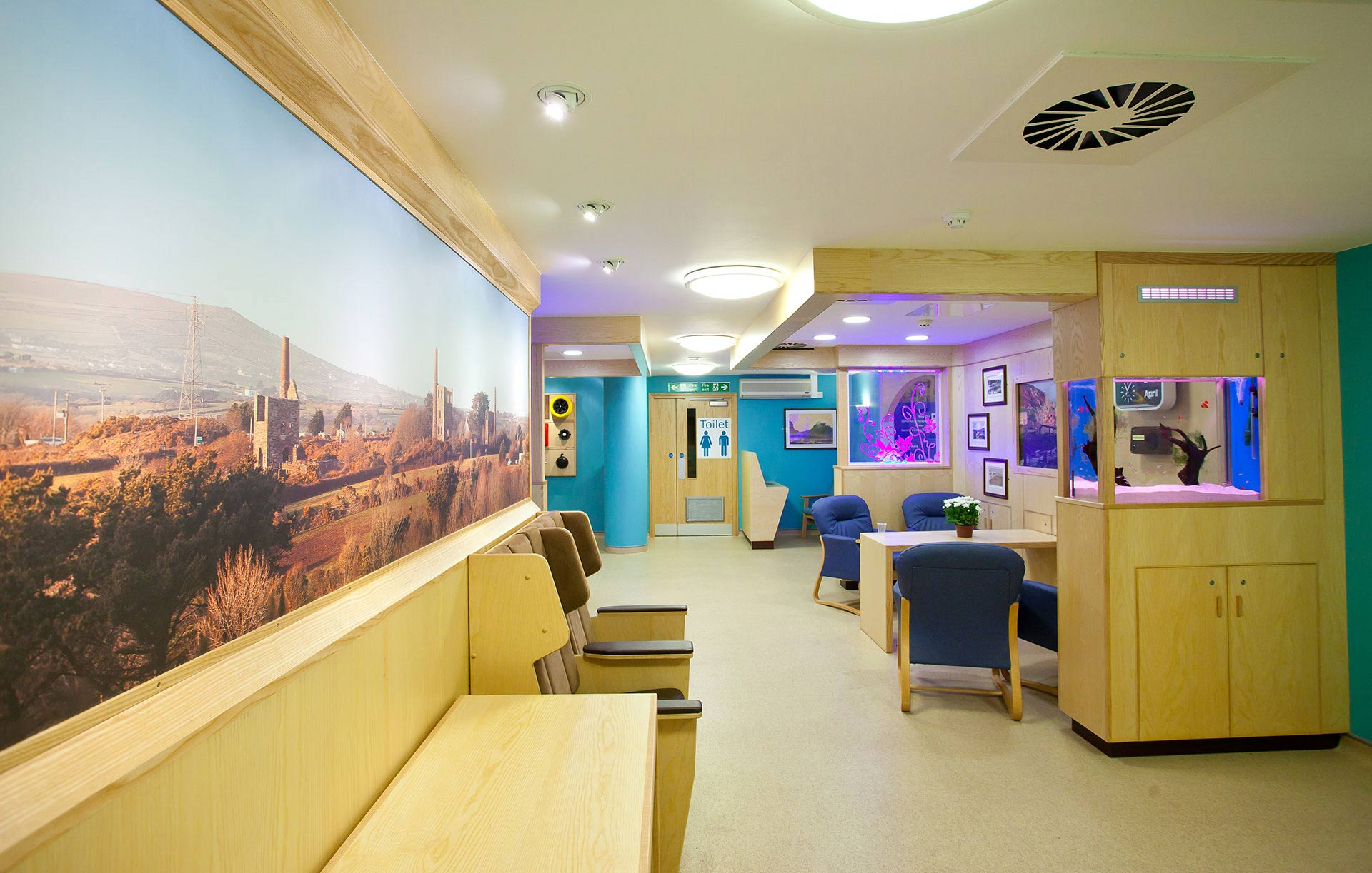 Large panels of local landscapes in dementia ward designed by Boex