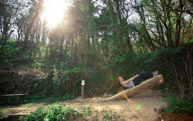 Ash and Chestnut felled wood used to make the outdoor gym for National Trust
