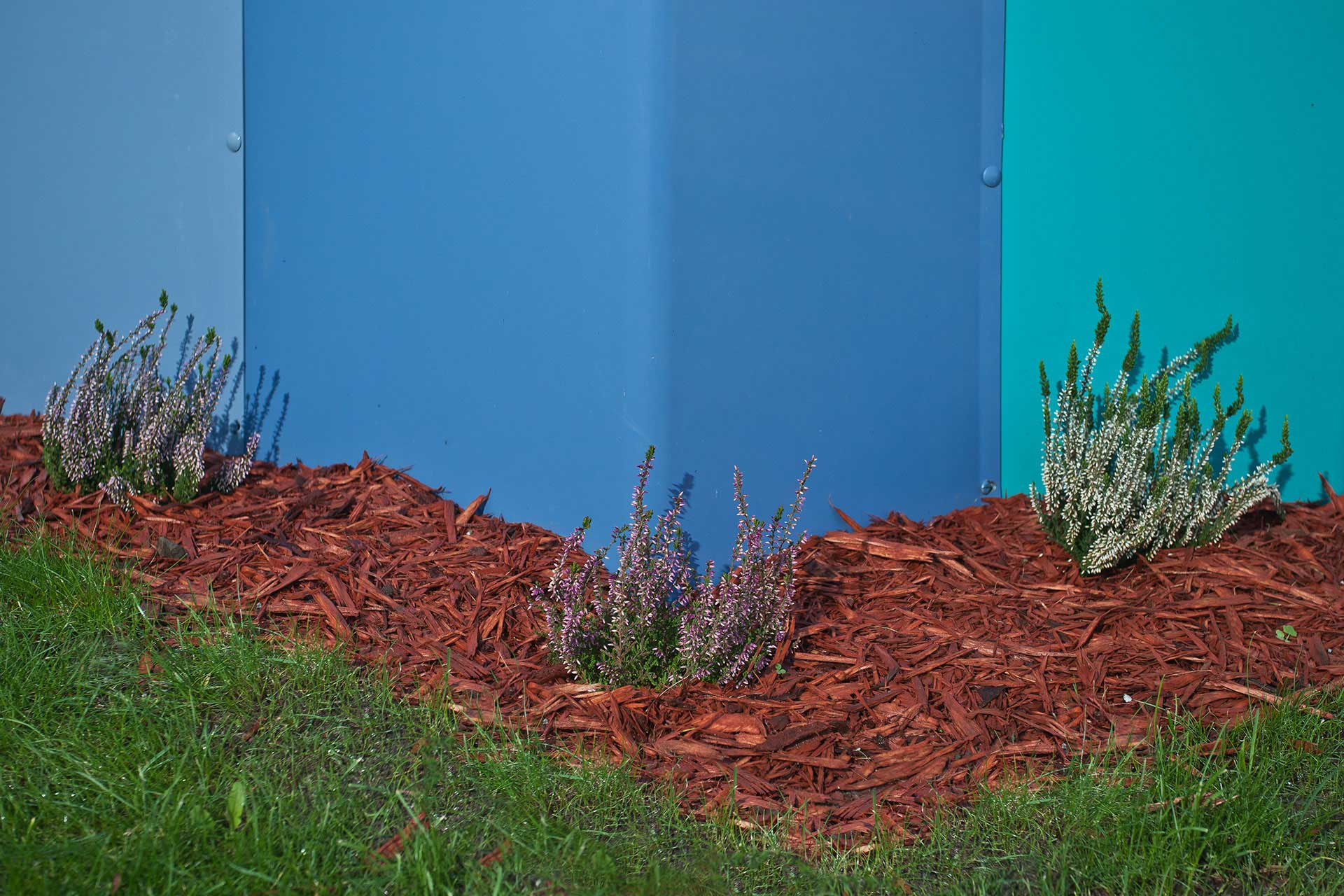 planted shrubs next to colourful mental health fence designed by Boex