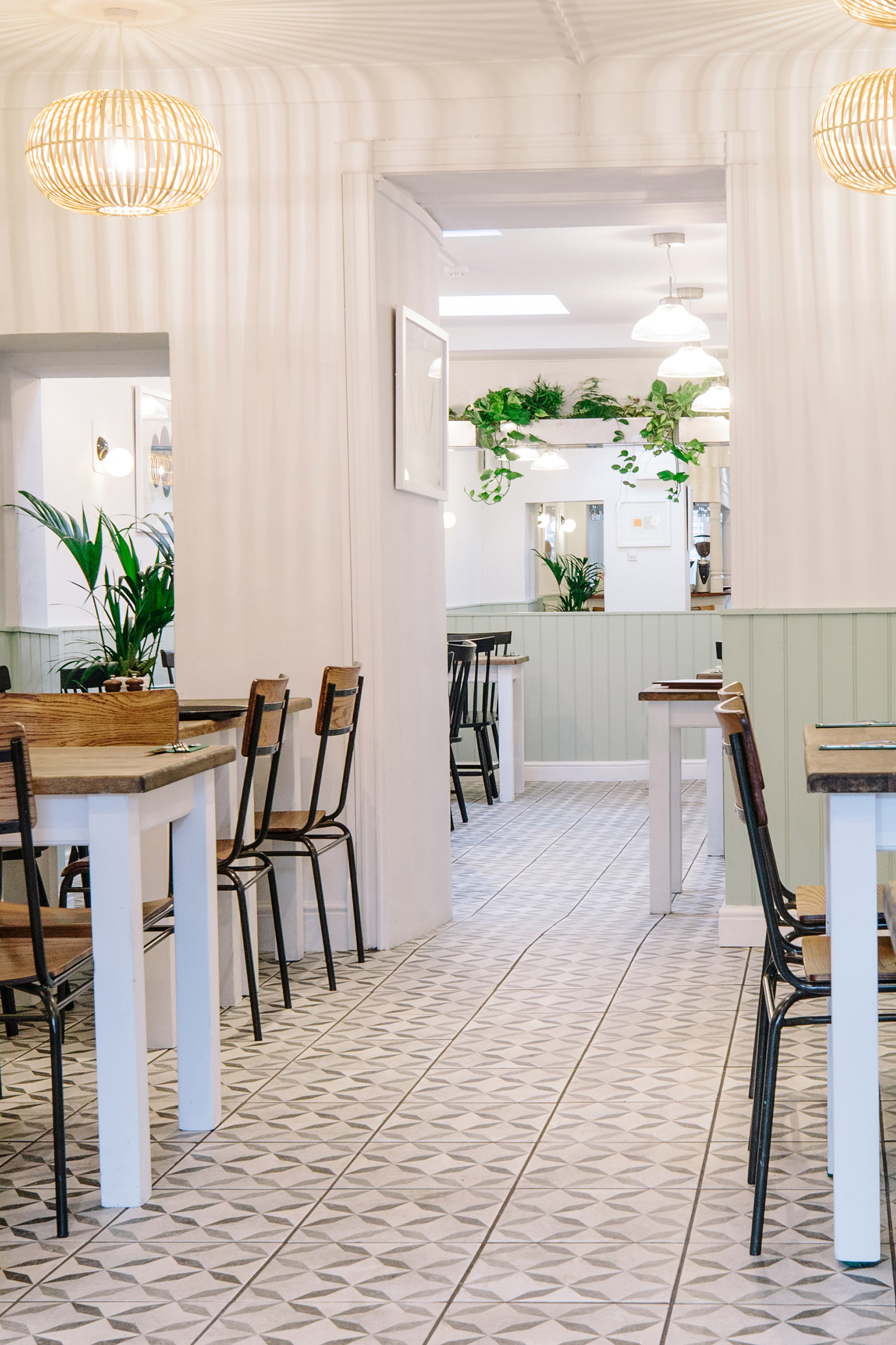 trailing vines hang from bespoke planters in falmouth cafe